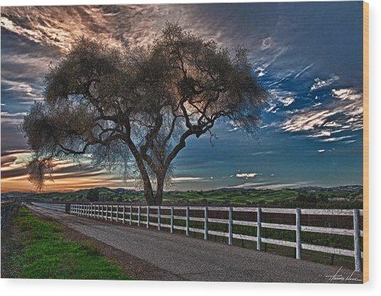 Los Alamos Vineyard Oak Wood Print