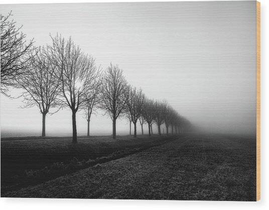 Losing Sight Wood Print by Christophe Staelens