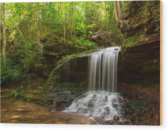 Lost Creek Falls Wood Print