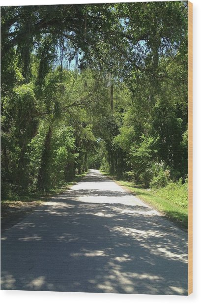 Lost In Marion County Florida Wood Print
