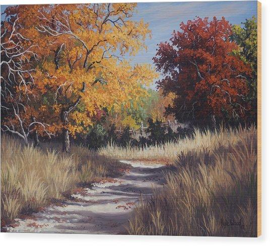 Lost Maples Trail Wood Print