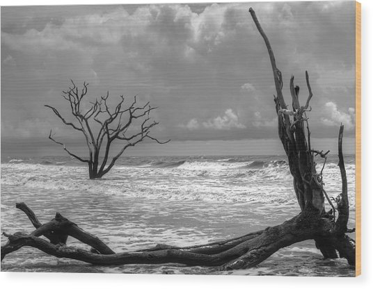 Lost To The Sea Wood Print