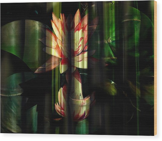 Lotus Bamboo  Wood Print