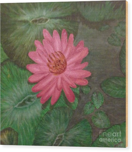 Water Lilly Wood Print by S P