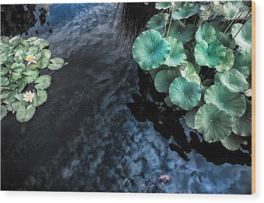 Lotus Pond Fantasia Wood Print