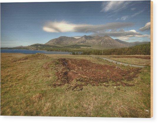 Lough Inagh Valley View Wood Print by John Quinn