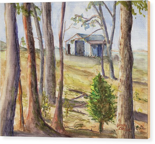Louisiana Barn Through The Trees Wood Print