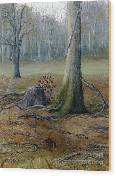 Louisiana Winter Landscape From An Oil Painting Wood Print