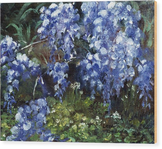 Louisiana Wisteria Wood Print