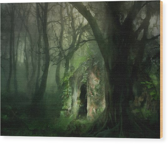 Love Affair With A Forest Wood Print