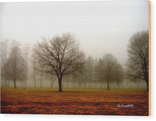 Love Foggy Mornings Wood Print
