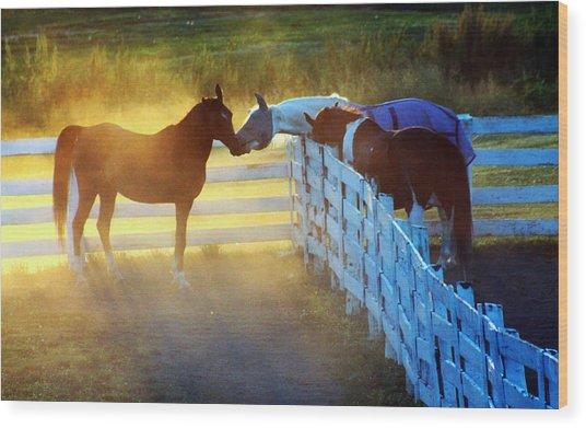 Love In Kentucky Wood Print