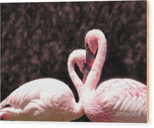 Love Of The Flamingos Wood Print