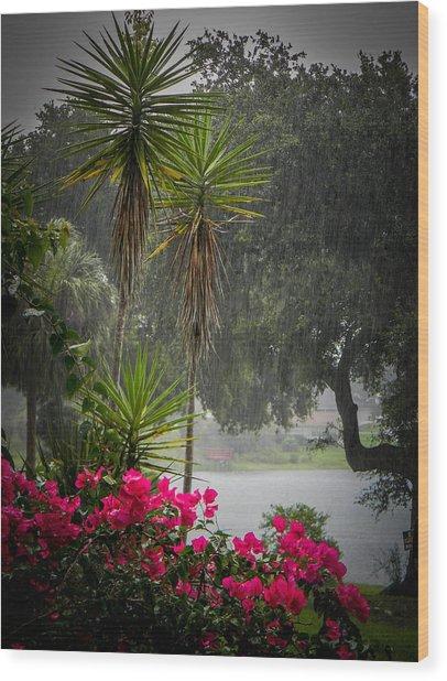 Love The Rain  Wood Print