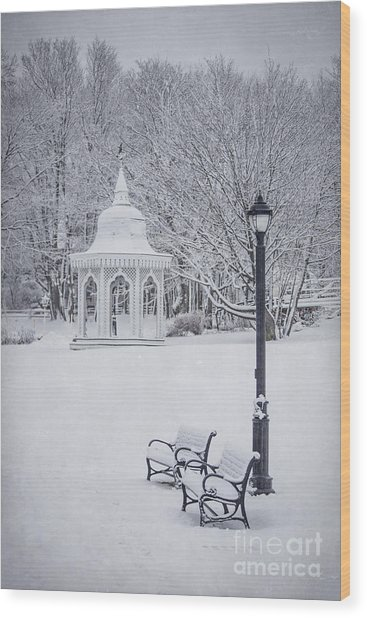 Love Through The Winter Wood Print