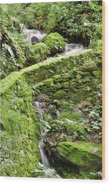 Lovely Waterfall Wood Print
