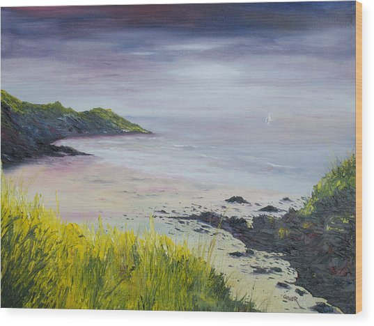Lovers Cove Kinsale   Wood Print