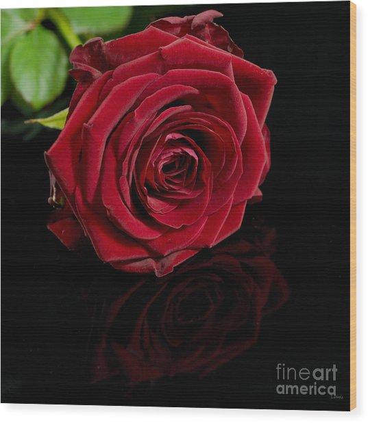 Lovers Gift Wood Print by Wobblymol Davis