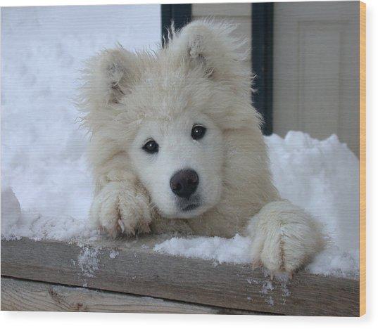 Loving The Snow Wood Print