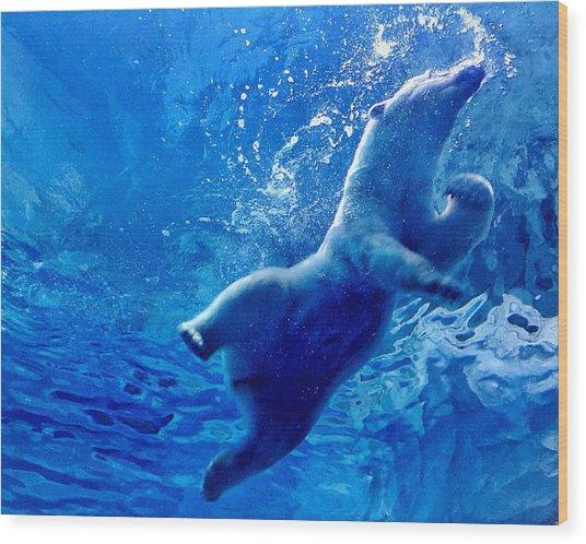 Low Angle View Of Polar Bear Swimming Wood Print