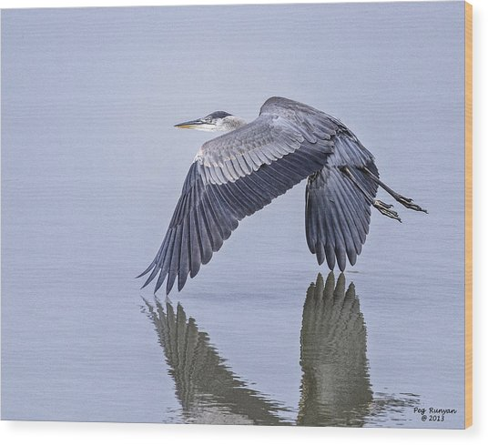 Low Flying Heron Wood Print