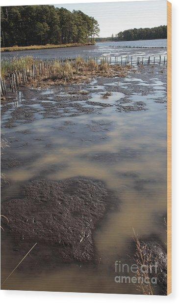Low Tide At Blackwater Wildlife Refuge In Maryland Wood Print