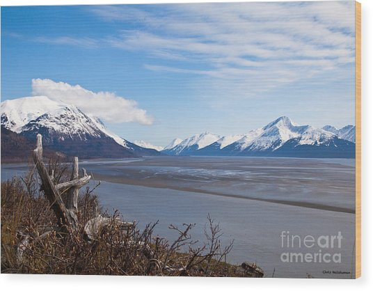 Low Tide Turnagain Arm Wood Print by Chris Heitstuman