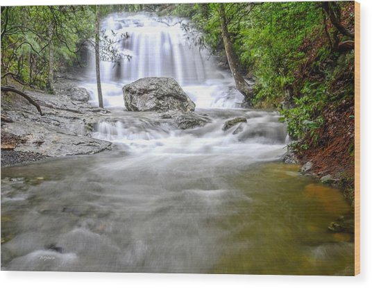 Lower Disharoon Falls Wood Print by Bob Jackson