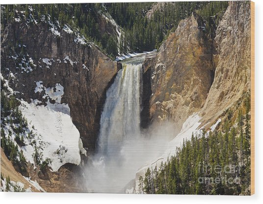 Lower Falls Of The Yellowstone Wood Print
