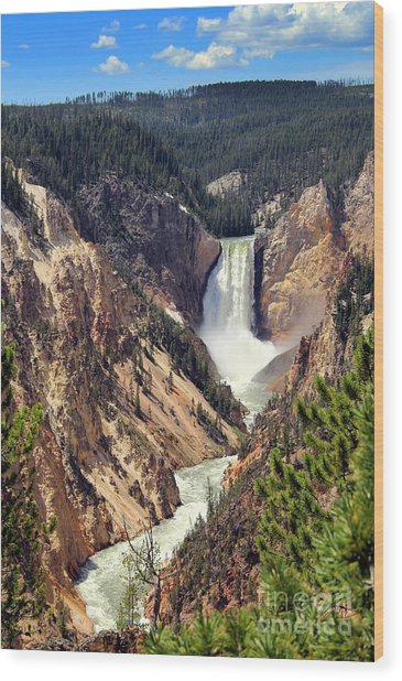 Lower Falls Of Yellowstone Wood Print