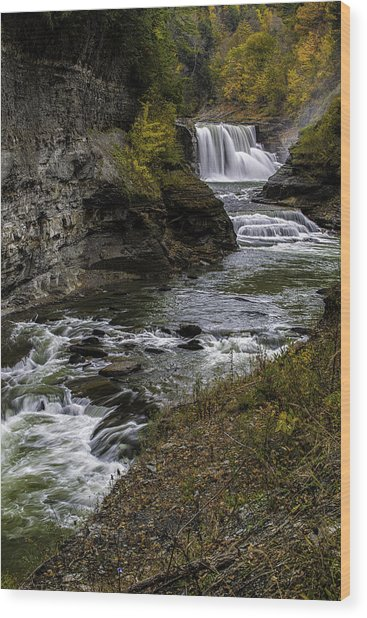 Lower Falls Wood Print