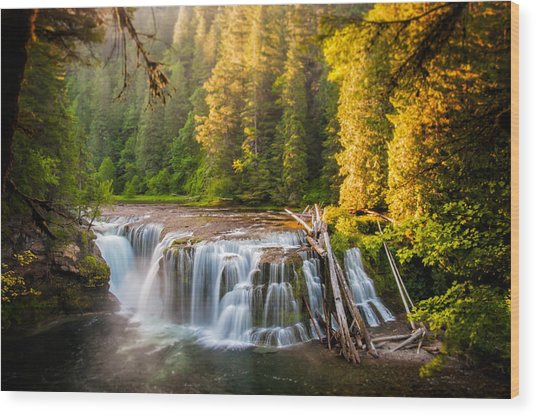 Lower Lewis River Falls Sunrise Wood Print