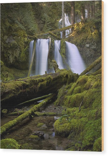 Lower Panther Creek Falls Wood Print