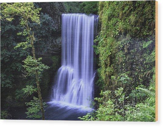 Lower South Falls Wood Print