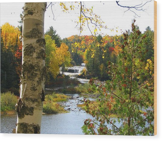 Lower Tahquamenon Falls In October No 1 Wood Print