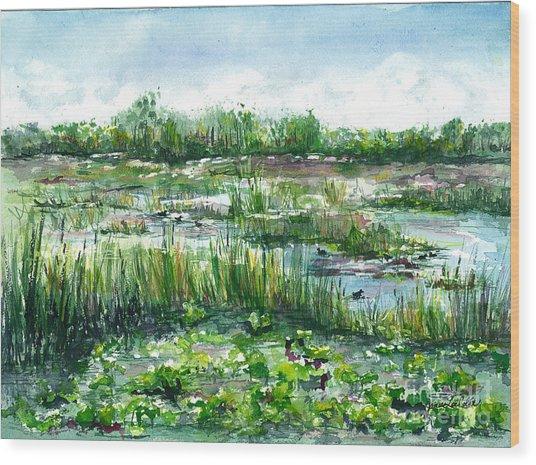 Loxahatchee Marsh Wood Print
