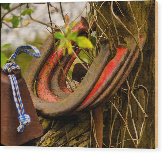 Lucky Horseshoes Wood Print