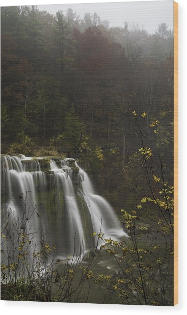 Ludlowville Falls In Autumn I Wood Print
