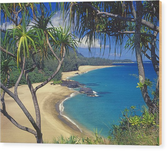 Lumahai Beach Wood Print