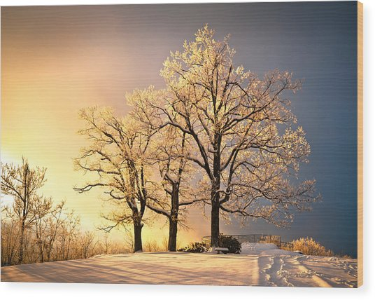 Luminous - Blue Ridge Winter Sunset Wood Print