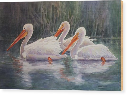 Luminous White Pelicans Wood Print
