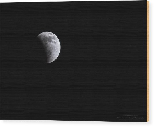 Lunar Night By Denise Dube Wood Print