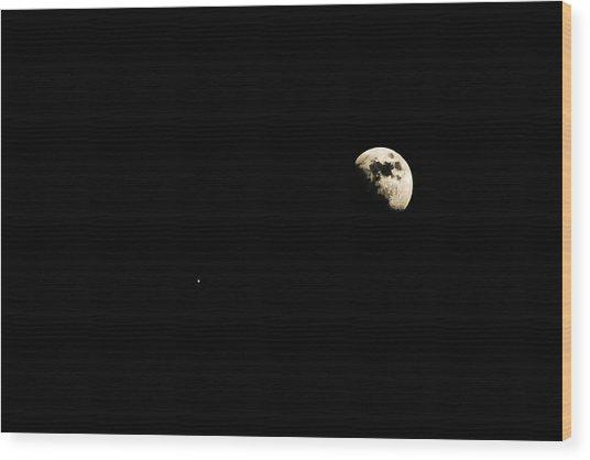 Lunar Fun Wood Print