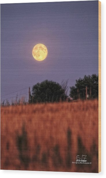 Lunar Light Lifting Wood Print by Dan Quam