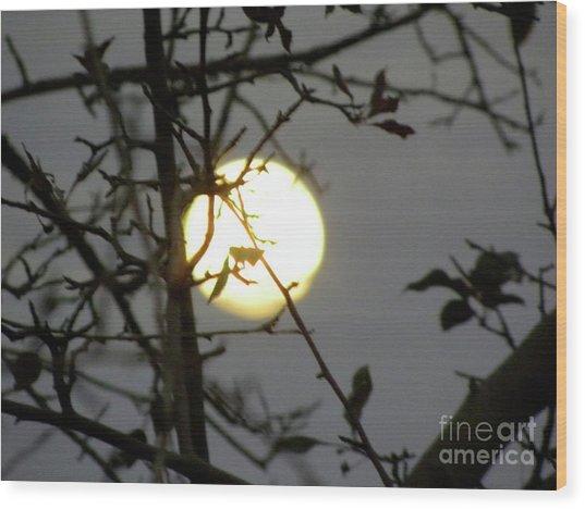 Lunar Still Life 2 Wood Print by Laura Yamada