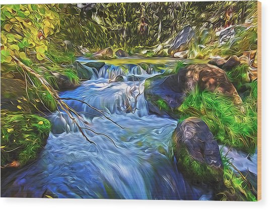 Lundy Creek Flow Wood Print