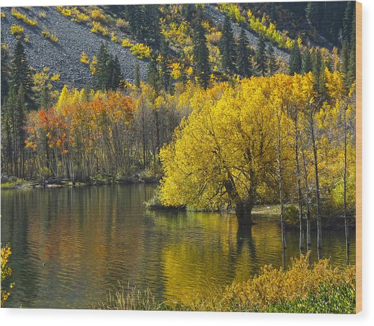 Lundy Lake In Fall Wood Print