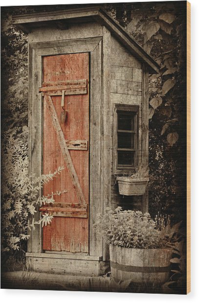 Luxury Outhouse Wood Print