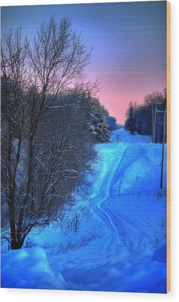 Lwv50008 Wood Print by Lee Wolf Winter
