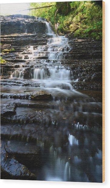 Lwv60001 Wood Print by Lee Wolf Winter